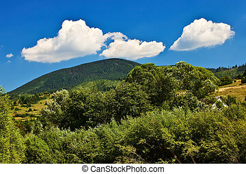 Blue sky view with white clouds over mountains with forest.