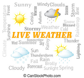 Live Weather Represents Meteorological Conditions And...