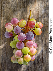 Bunch of unripe wine grapes on old table wood