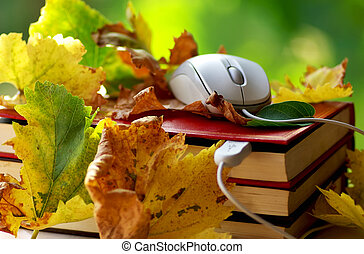 Mouse and books.