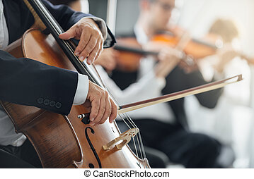 Symphony orchestra performance, string section - String...