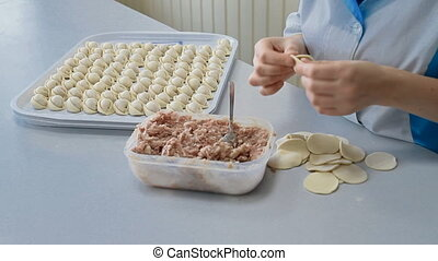 A chef is wrapping meat into the dumplings - A cook is...