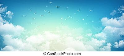 Morning sky sensation - High resolution morning sky...