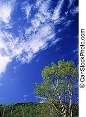 Plateau sky blue
