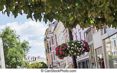 Hanging streets flower pots Plovdiv - Hanging colorful...