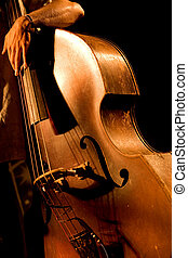 Double bass - Hand of the musician on the contrabass at the...