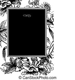Vector Black Flower Frame