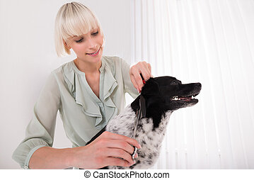 Woman Grooming Her Dog