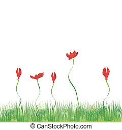 Grass background, flowers red
