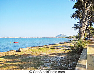 Coast with trees and grass beach between Alcudia and...