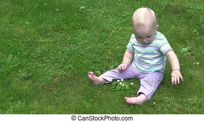 Cute baby explore daisy flowers sitting on lawn New...