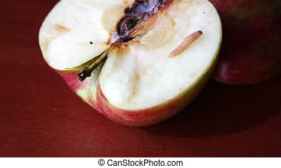 Worm Crawls out of the Tainted Apple