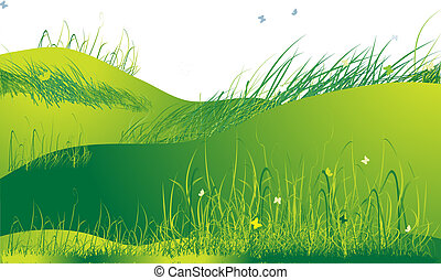 Meadow green, summer, grass and butterflies