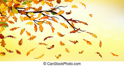 Autumn falling leaves - Branch with falling autumn oak...