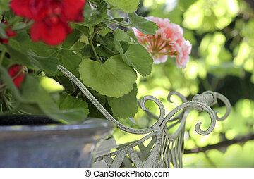 tranquil home garden