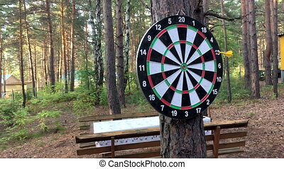 game Darts in the woods. Slow motion