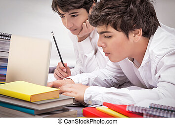 Two classmates doing homework together at home, resolving...