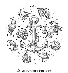 Set sea shell, coral, crab, shrimp and anchor. Vector...