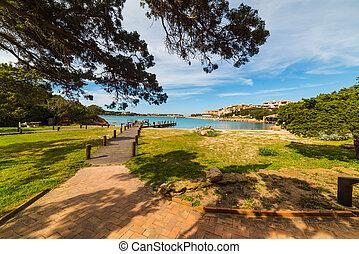 green grass in Porto Cervo, Sardinia