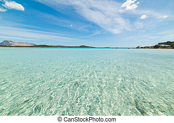 clear water in Lu Impostu beach, Sardinia