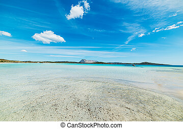 crystal clear water in Lu Impostu beach, Sardinia