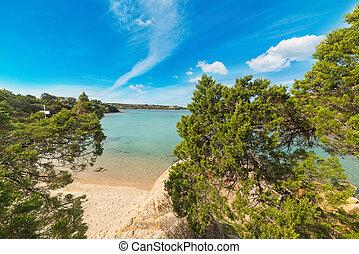 turquoise water in Porto Cervo, Sardinia