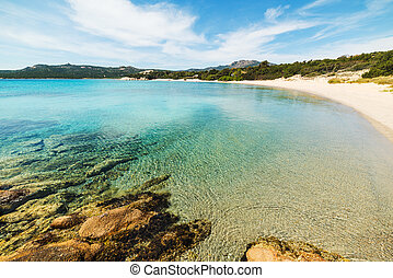 turquoise water in La Celvia beach, Sardinia
