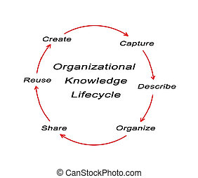 Organizational Knowledge Lifecycle