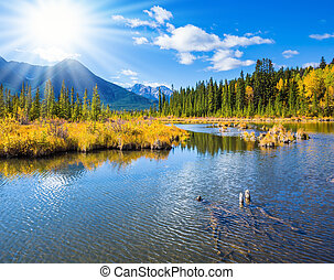 Vermilion Lakes in mountains of Banff - Concept of active...