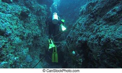 Divers swim underwater with aqualung between reefs. Blue...