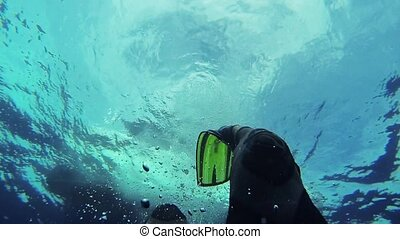 Diver swim underwater in flippers. Many bubbles. Blue clean...