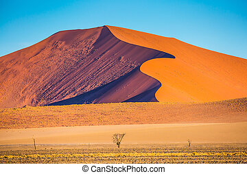 Curved sharp crests of orange dunes - Fancifully curved...