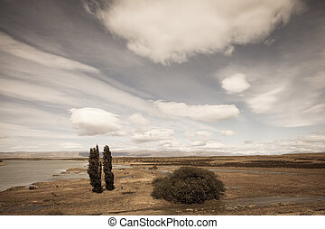 Argentine Patagonia on a windy day. Yellow flat desert with...
