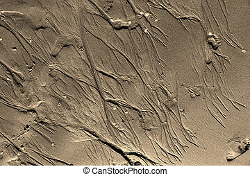 beach sand - Creative design of beach sand