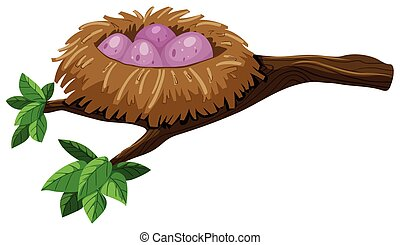 Four eggs in bird nest illustration