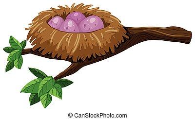Four eggs in bird nest illustration