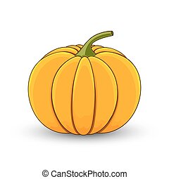 pumpkin on a white isolated background cartoon