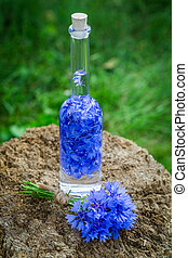 Healthy tincture made of cornflowers