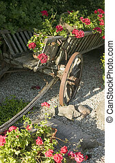 Old wooden wagon filled with flowers