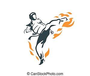 Deadly Flying Front Kick Flame - Aggressive Taekwondo...