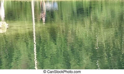 Shot of lake scenic in summer Blurred nature unfocused...