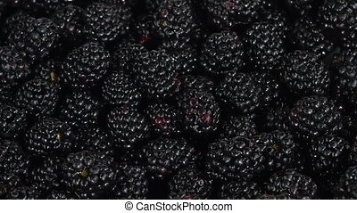 Wild berries. White. Rotating. Close up - Wild berries, many...