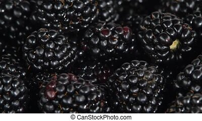 Fresh blackberries. Rotating. Close up - Many fresh...