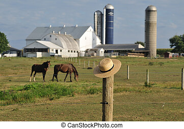 Lancaster county Amish farm - Amish straw hat laying over...