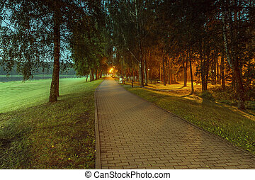 Path in evening - Lithuanian landscape come the fall when...