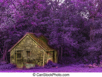 Detail of woodcutters cabin in Autumn forest with purple nature concept