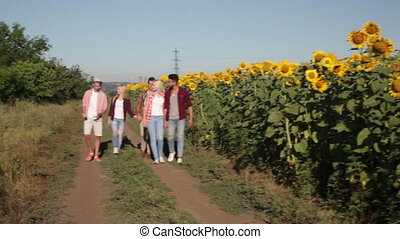 People group friends walking countryside road happy smile,...