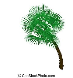 Green palm tree at an angle isolated on white background illustration