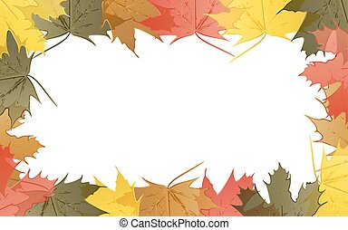 Wallpaper maple leaves in autumn