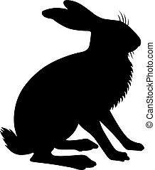Hare, shade picture